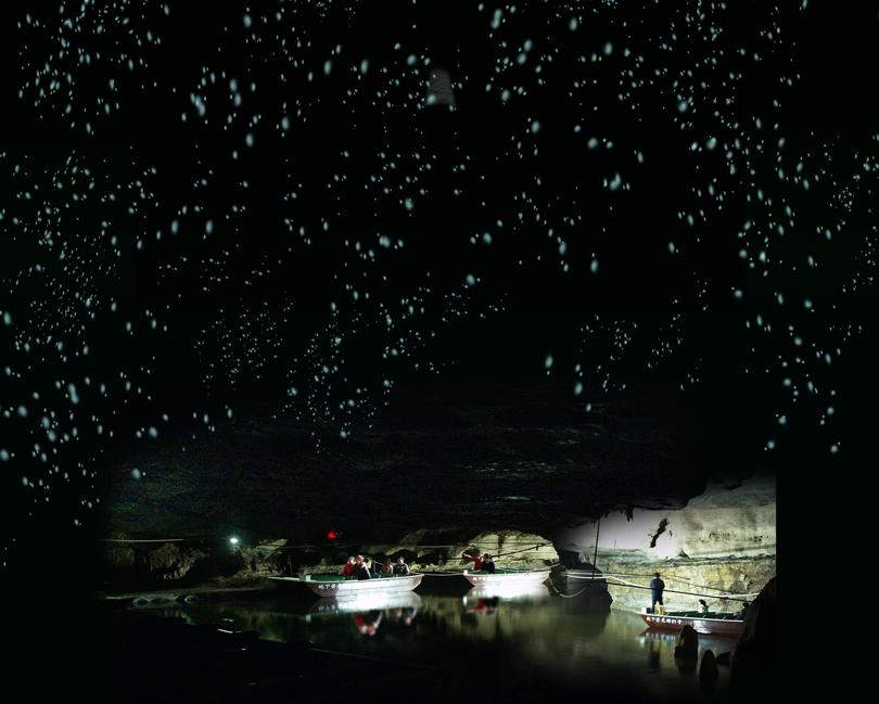万人召唤相约看萤火虫:萤火虫水洞最低10元活动公告